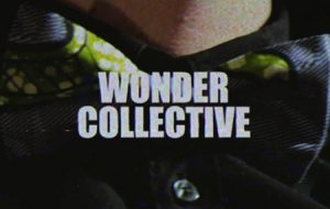 Wonder Collective - Don't you Worry 'bout a Thing